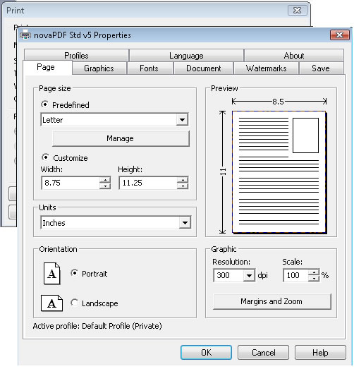 Printer properties window